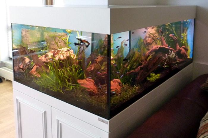Aquariumschrank Sonderanfertigung vom Schreiner